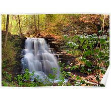 Spring Blossoms Grace Erie Falls Poster