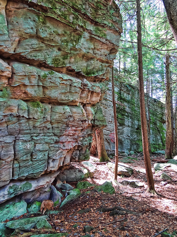 Cliff wall by vigor