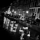 The Red Light District by Jane Ruttkayova