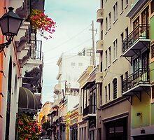 Old San Juan Puerto Rico 2 by Elizabeth Thomas