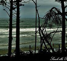 Ruby Beach through tall trees by Sarah Ella Jonason