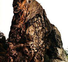 Rock Man Ruby by Sarah Ella Jonason