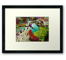 urban parrot Framed Print