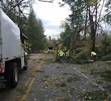 Storm Disaster Recovery Team by addieturner62