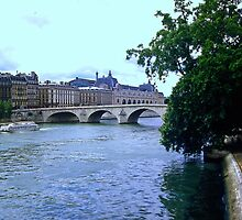 Seine 1986 by Priscilla Turner
