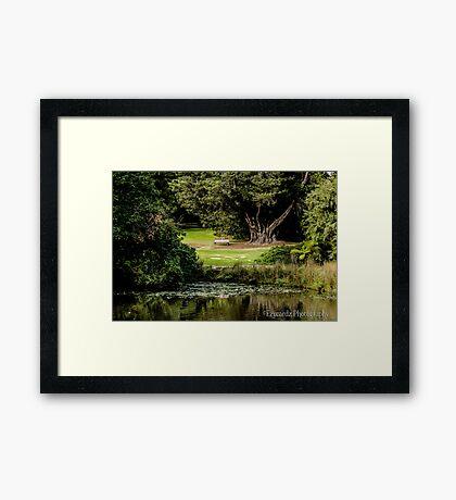 Botanical Gardens (6) Framed Print