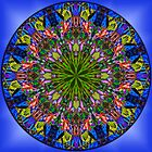 Frangipani Rainbow Mandala by haymelter