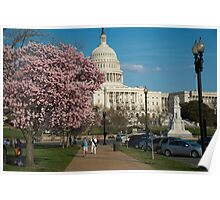 Capitol Cherry Poster
