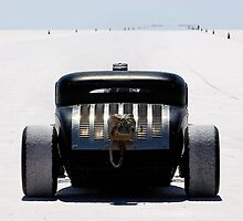 Hot Rod on the salt 2 by Frank Kletschkus