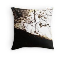Welsh Countryside  Throw Pillow