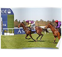 Anticipated  winning at Ascot 1st may 2013 Poster