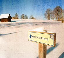 Signpost by mlphoto