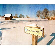Signpost Photographic Print