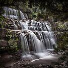 Peering through to Liffey Falls (Tas) by John Conway