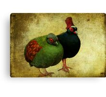 Odd Couple Canvas Print