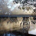 The Old Goulburn River Bridge by Robert Jenner