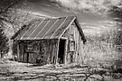 Old Shed III - B&W by PhotosByHealy