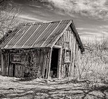 Old Shed III - B&W by PhotosByHealy