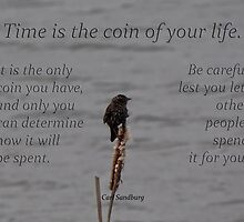 time is a coin-inspirational by vigor
