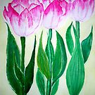 THREE PINK TULIPS by jyoti kumar
