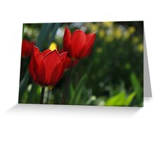 Beautiful Tulip Greeting Card