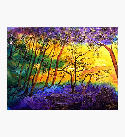 Sunkissed Valley  Photographic Print