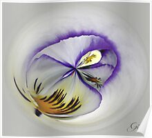 """""""Pansy"""" Poster"""