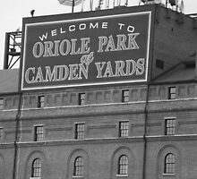Baltimore Orioles Park at Camden Yards by Frank Romeo