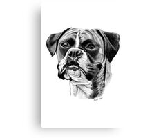 The playful Boxer dog. Canvas Print