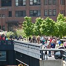 The High Line, New York City's Elevated Garden and Park by lenspiro