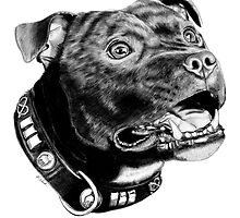 Staffordshire Bull Terrier by KARLNASH