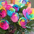 Roses In Color by Ginger  Hamilton