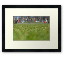 Parkers Framed Print