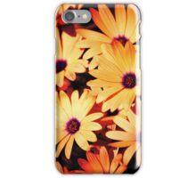 Sunburst Daisies iPhone Case/Skin