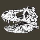 T-Rex Skull by ZugArt