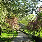 Riverside Park, New York City  by Alberto  DeJesus
