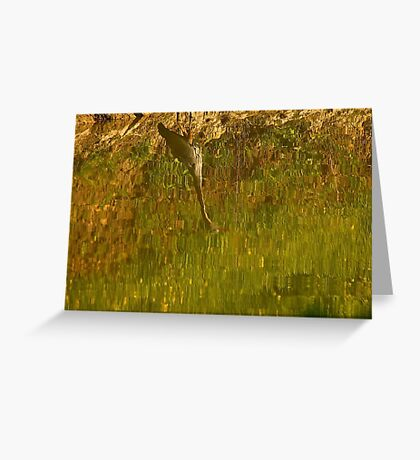 Abstract on the Pond Greeting Card