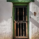 Old Hacienda Door by heatherfriedman