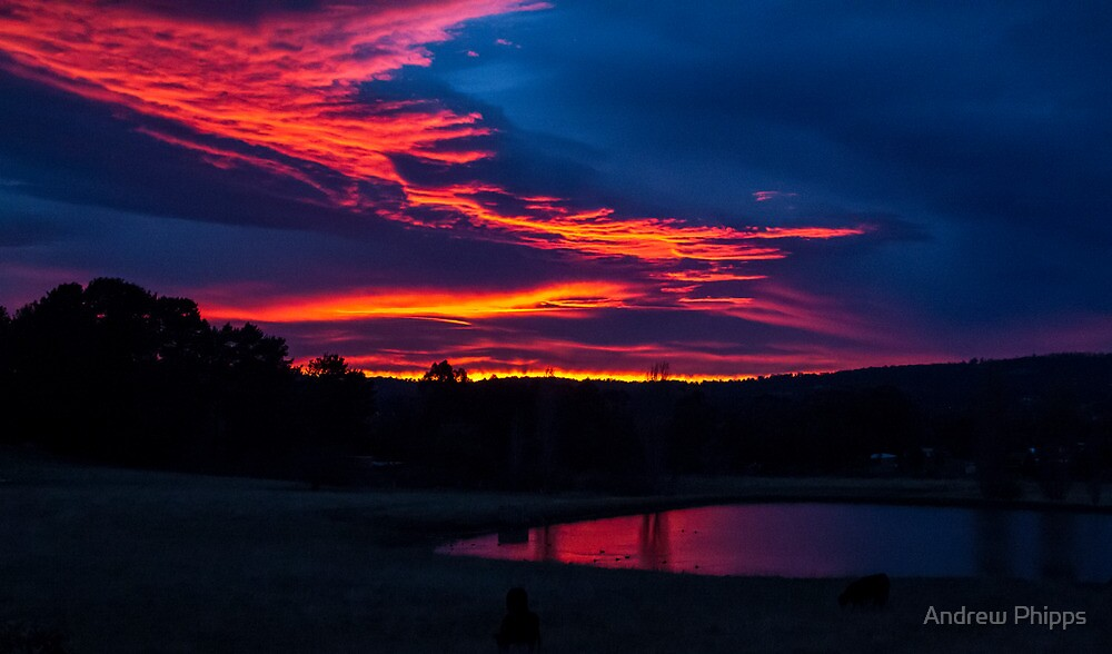 Something worth waking up for! by Andrew Phipps
