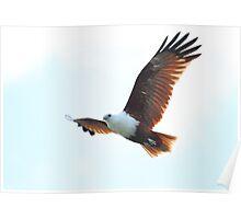 Beautiful Kite Poster