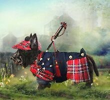 Scottie Of The Glen by Trudi's Images