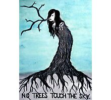 no trees touch the sky (2011) Photographic Print