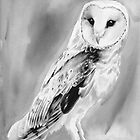 barn owl by dollface87