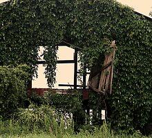 barn love by sherreaa