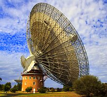 The Dish by Doug Cliff