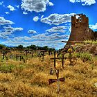 Sacred Burial Grounds Of Taos Pueblo by Diana Graves Photography