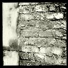 Brick Wall - behind Borough Market, London by Lisa Hafey