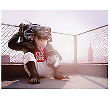 Monkey Beat Photographic Print