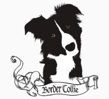 Border Collie by BrightBrownEyes