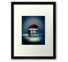Embryo Aglow Framed Print
